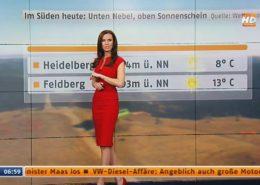 TV Moderatorin Susanne Schöne für N24 Nachrichtensender Wetter